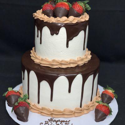 Two Tiered Dessert Cake